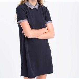 ZARA Striped Poplin Collar Navy Shift Dress